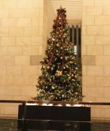 中之島ダイビルのクリスマスツリー(2013.12.23).JPG