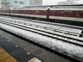雪(2014.2.14).JPG